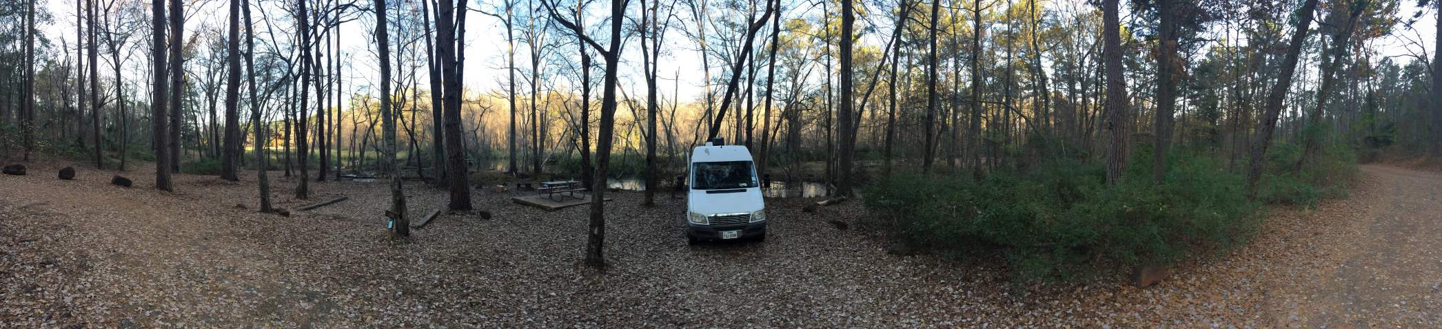 Tyler State Park Camping